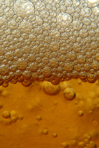 Beer Froth iPhone Wallpaper