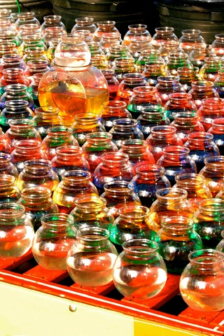 Fishbowls Iphone Wallpaper Idesign Iphone
