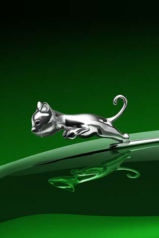 Jaguar on Baby Jaguar Iphone Wallpaper Tweet Baby Big Funny Green Jaguar Kitten