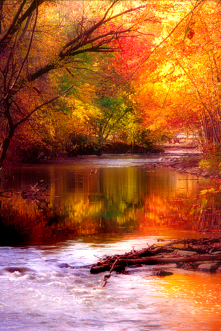 Fall on Fall Season Iphone Wallpaper Tweet Autumn Big Color Colour Fall Nature