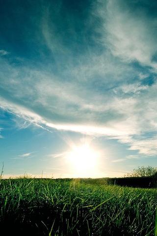 Rising Sun iPhone Wallpaper