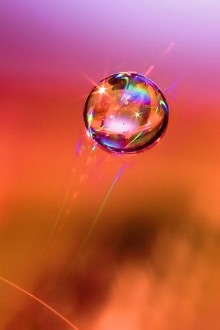 Droplet Capture iPhone Wallpaper
