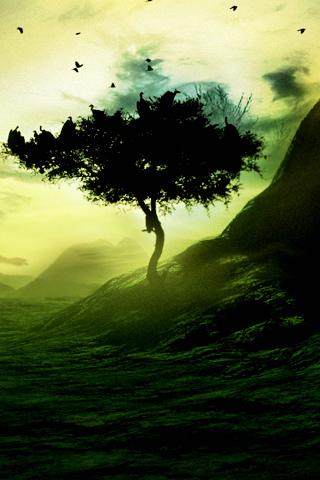 Green Tree iPhone Wallpaper