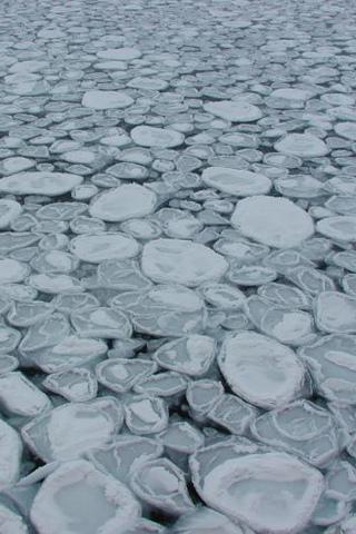 Arctic Pebbles iPhone Wallpaper