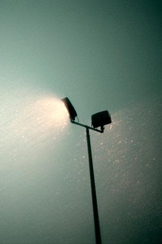 Park Lamp iPhone Wallpaper