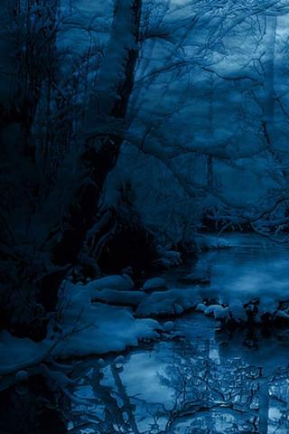 Winter Night Iphone Wallpaper Idesign Iphone