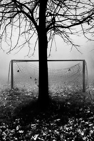 Tree Goalie iPhone Wallpaper