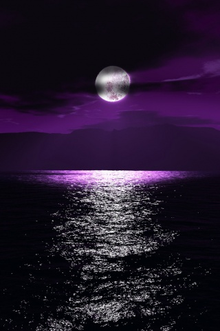 Violet Night iPhone Wallpaper