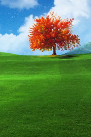 Orange Tree iPhone Wallpaper