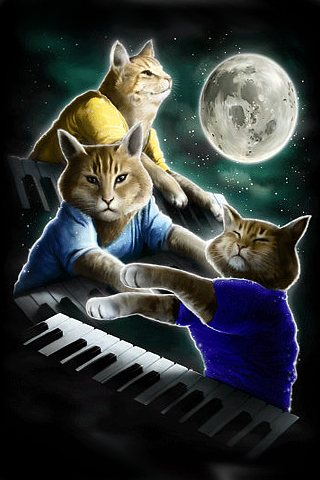 Three Keyboard Cat Moon iPhone Wallpaper