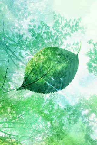 Falling Leaf Painting iPhone Wallpaper