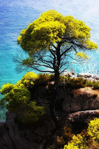 Skopelos Island iPhone Wallpaper