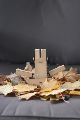 Danboard Fall iPhone Wallpaper