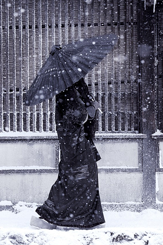 Snowy Day iPhone Wallpaper