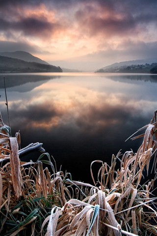 Frost by Gary Macparland iPhone Wallpaper