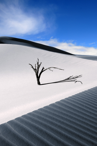 Sand Dune iPhone Wallpaper