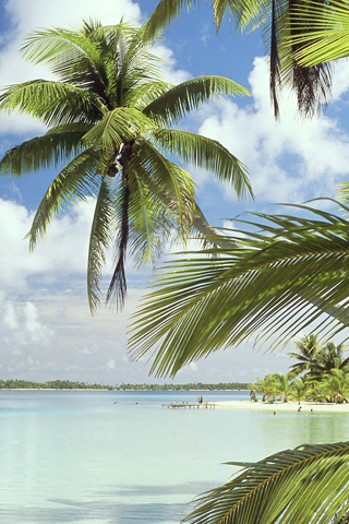 Takapoto Island, French Polynesia iPhone Wallpaper