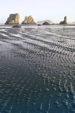 Bandon Beach State Park, Oregon iPhone Wallpaper