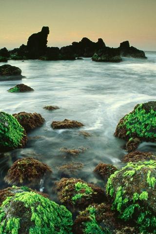 Hookipa Seascape, Hawaii iPhone Wallpaper