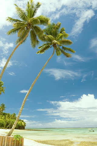 Mango Bay, Fiji iPhone Wallpaper