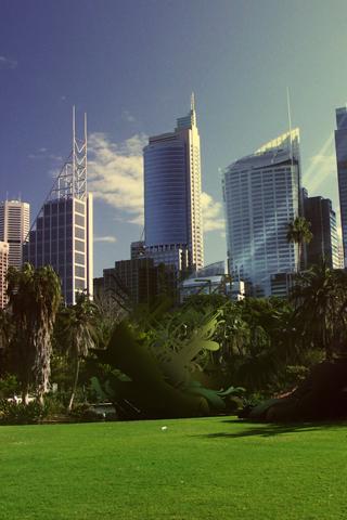 City Park iPhone Wallpaper