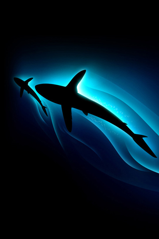 Shark Silhouette iPhone Wallpaper