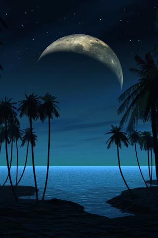 Beach at Night iPhone Wallpaper