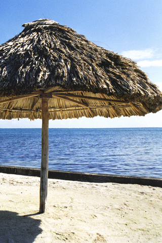 Beach Umbrella iPhone Wallpaper