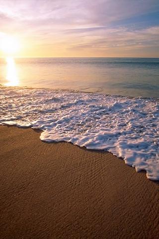 Sandy Beach IPhone Wallpaper