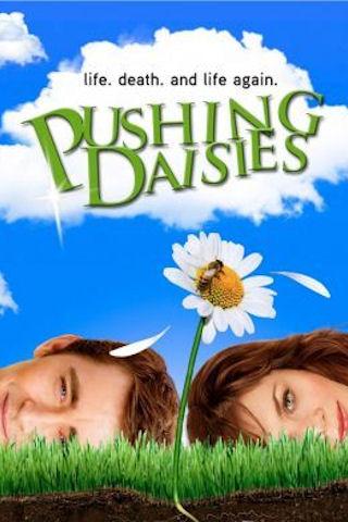 Pushing Daisies iPhone Wallpaper