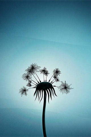 Dandelion 2D iPhone Wallpaper