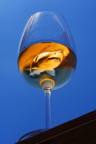 Shark in a Glass iPhone Wallpaper