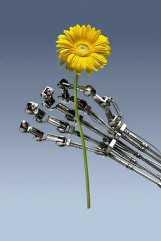 A Robots Gift iPhone Wallpaper