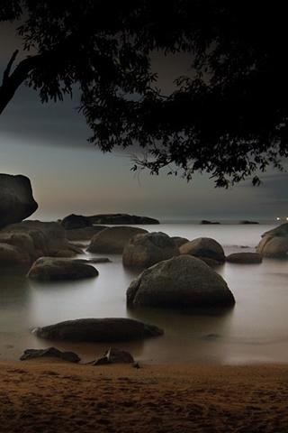 Calm & Misty Lake iPhone Wallpaper