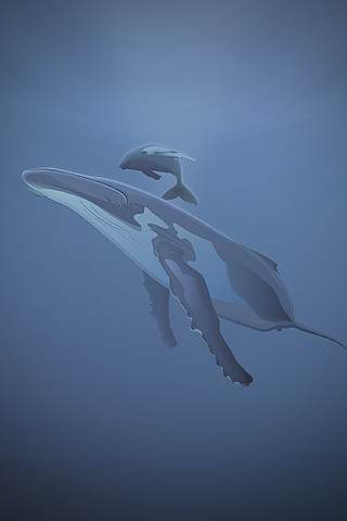 Whale Vector iPhone Wallpaper