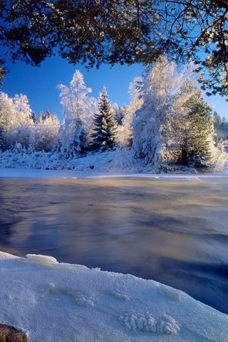 winter wonderland wallpaper. A Winter Wonderland