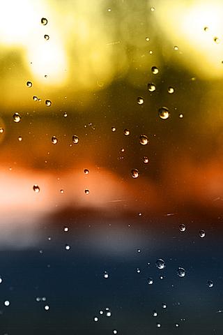 Raind Drops iPhone Wallpaper