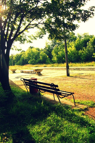 Park Bench iPhone Wallpaper
