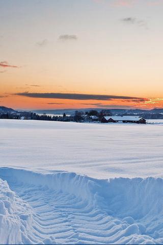 Snow Tracks iPhone Wallpaper