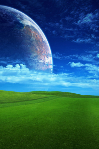 Grassy Field iPhone Wallpaper