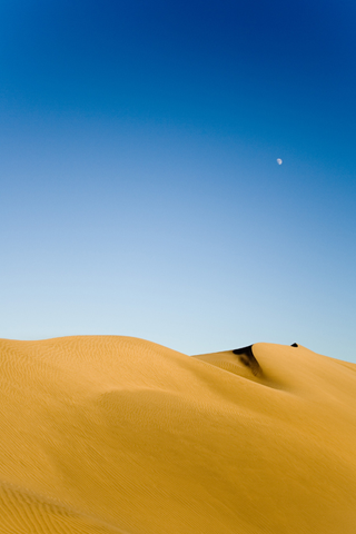 Desert Dunes iPhone Wallpaper